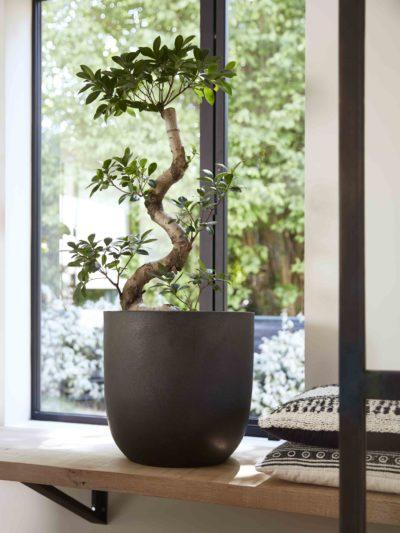 Grote Hoge Plantenpot.Design Bloempotten Voor Binnen En Buiten Capi Europe